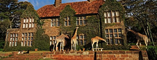 giraffe-manor1 (1) (Custom).jpg