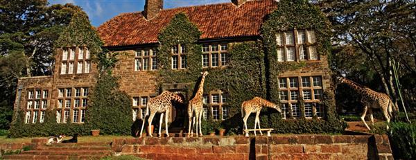 giraffe-manor1 (1) (Custom).jpg